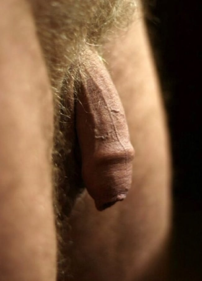 Arab sex big dick
